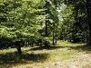Photo Keel Mountain Estates GURLEY, AL 35748: $24900