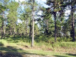 Photo Lakewood Ranches EUSTIS, FL 32736: $90000